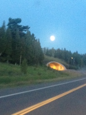 driving to the north shore of Minnesota