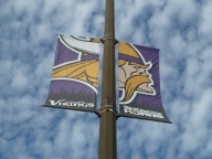 Metrodome, Vikings, Minnesota