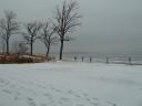 Detroit Lakes