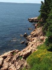 Rocky Coast near Bass Harbor